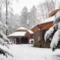 Obejrzyj galerię: Atak zimy