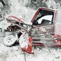 Obejrzyj galerię: Strażacy walczą ze skutkami intensywnych opadów śniegu