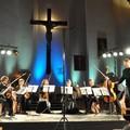 Obejrzyj galerię: Festiwalowy Ensemble