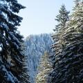 Obejrzyj galerię: Samotność narciarza 2 – leniwy spacer Doliną Tomanową...