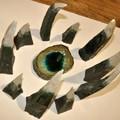 """Obejrzyj galerię: """"Sonata ceramiczna"""" w Miejskiej Galerii Sztuki"""