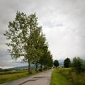 Obejrzyj galerię: I Międzynarodowy Ponadpółmaraton - zdjęcia z trasy