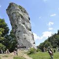 Obejrzyj galerię: Szlakiem Orlich Gniazd