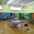 Obejrzyj galerię: Gimnazjada Powiatu Nowotarskiego w tenisie stołowym