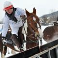 Obejrzyj galerię: BMW Zakopane Snow Polo 2012 - półfinały
