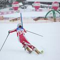 Obejrzyj galerię: Akademickie Mistrzostwa Polski w narciarstwie alpejskim