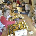 """Obejrzyj galerię: Turniej szachowy o """"Wielki Puchar Czekoladowy"""""""