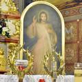 Obejrzyj galerię: Peregrynacja obrazu Jezusa Miłosiernego