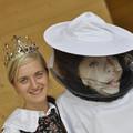 Obejrzyj galerię: Piknik pszczelarski