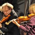 Obejrzyj galerię: Hugo Wolf Quartett