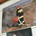 Obejrzyj galerię: Straż pożarna w obiektywie Michała Adamowskiego.