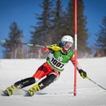 Obejrzyj galerię: Polskie narciarstwo alpejskie. Anna Berezik