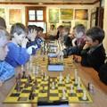 Obejrzyj galerię: Turniej Szachowy o Wielki Puchar Czekoladowy
