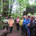 Obejrzyj galerię: Chodzimy po górach i zdobywamy Górską Odznakę Turystyczną PTTK