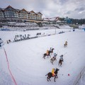 Obejrzyj galerię: BUKOVINA Polo Snow Masters 2014