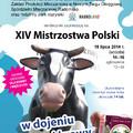 Obejrzyj galerię: XIV Mistrzostwa Polski w dojeniu sztucznej krowy