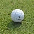 Obejrzyj galerię: Golf