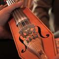Obejrzyj galerię: Szkoła mistrzów budowy instrumentów ludowych