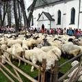 Obejrzyj galerię: Święto bacowskie w Ludźmierzu