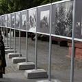 Obejrzyj galerię: Tatrzańska Atlantyda w Warszawie