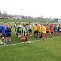 Obejrzyj galerię: Igrzyska Szkół Podstawowych w Mini Piłce Nożnej Chłopców