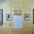 Obejrzyj galerię: Wernisaż wystawy o Witkacym w Galerii na Kozińcu