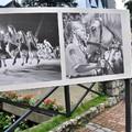 Obejrzyj galerię: Pierwsze wydarzenia Festiwalu Folkloru