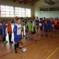 Obejrzyj galerię: Miejskie Igrzyska Szkół Podstawowych w Piłce Halowej Chłopców