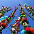 Obejrzyj galerię: Niedziela Palmowa w Lipnicy Murowanej