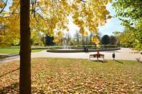 Jesiennie w obiektywie Jana Cieplińskiego