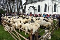 Święto bacowskie w Ludźmierzu