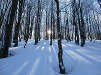 Bieszczady zimą – baśniowa kraina 2...