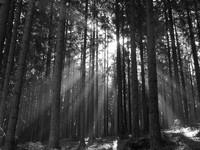 Dolina Lejowa i jej okolice – szałasy pasterskie, pierwszy śnieg – bo jesień idzie...