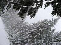 Śnieg padający wielkimi płatkami w Dolinie Małej Łąki