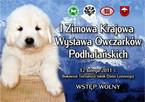 I Zimowa Krajowa Wystawa Owczarków Podhalańskich