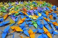 Nowotarskie żurawie solidarności z Japonią