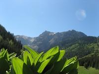Dolina Małej Łąki – dolina z Wielką Turnią w tle...