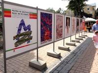 Wystawa plakatów muzycznych Waldemara Świerzego