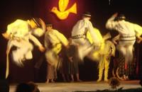"""Zawaternik na festiwalu """"Dziecko w Folklorze"""""""