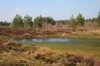 Torfowisko wysokie w Kotlinie Orawsko-Nowotarskiej