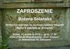 """Bożena Solańska - """"Szepty natury zaklęte w drewnie"""""""