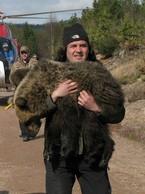 O tygrysach w niewoli i niedźwiedziach w Tatrach