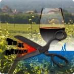 Opowieść, wino i quiz…