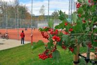 Słoneczna , jesienna pogoda była wymarzona na otwarcie Parku Miejskiego.