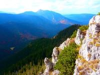 Jesienne kolory z grańki leśnej nad Chochołowską
